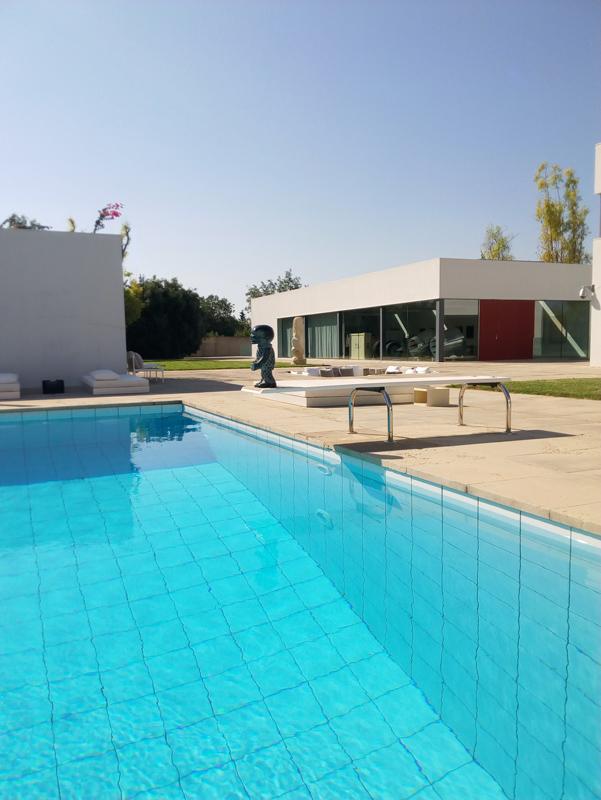 Stefan Rinck - June 23, 2017 | Fresh meat in the shark pool | Summer Pool Exhibition | Mallorca