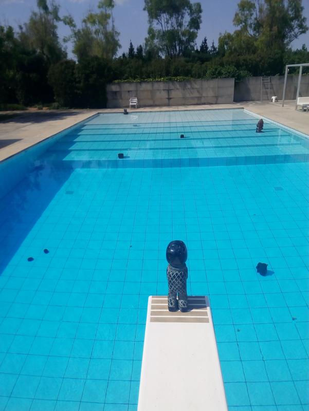 Stefan Rinck - June 23, 2017   Fresh meat in the shark pool   Summer Pool Exhibition   Mallorca